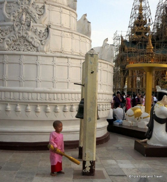 Little nun in Yangon